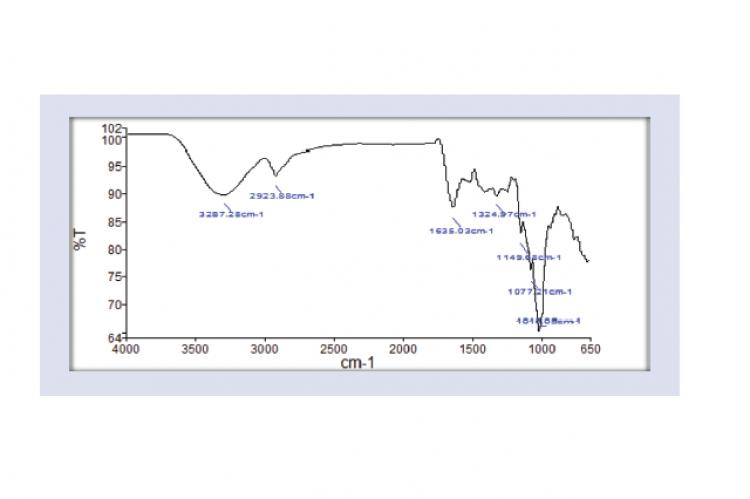 FTIR analysis of Curcuma caesia Roxb.