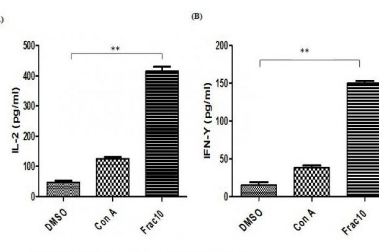 Cytokine induction was measured after 48h treatment of human PBMC