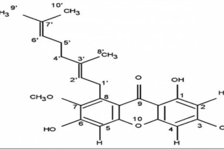 Structure of Rubraxanthone.2
