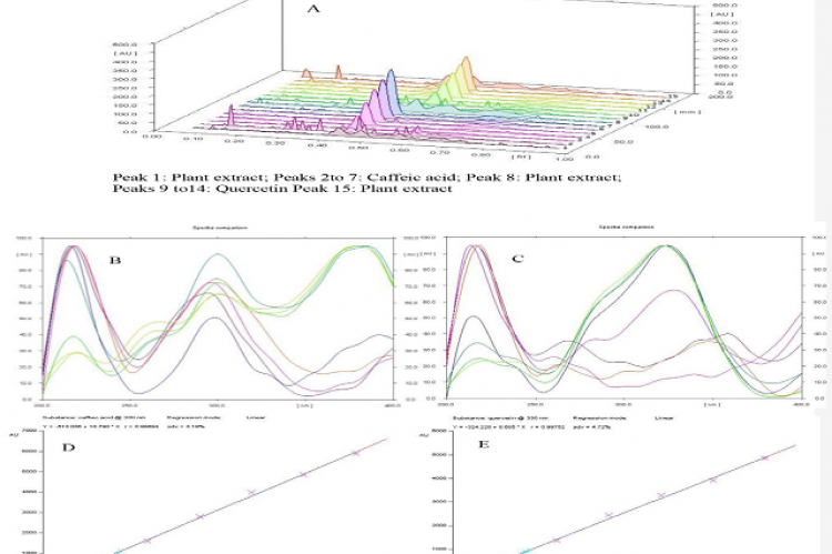A. HPTLC Chromatogram showing peaks of sample and standards 1.