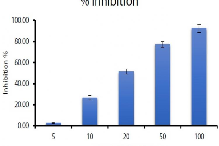 Inhibition of hyaluronidase (%) activity by ethanol extract of Salvia officinalis (EES) for each concentration. The values are expressed as mean ± SD (n=3)