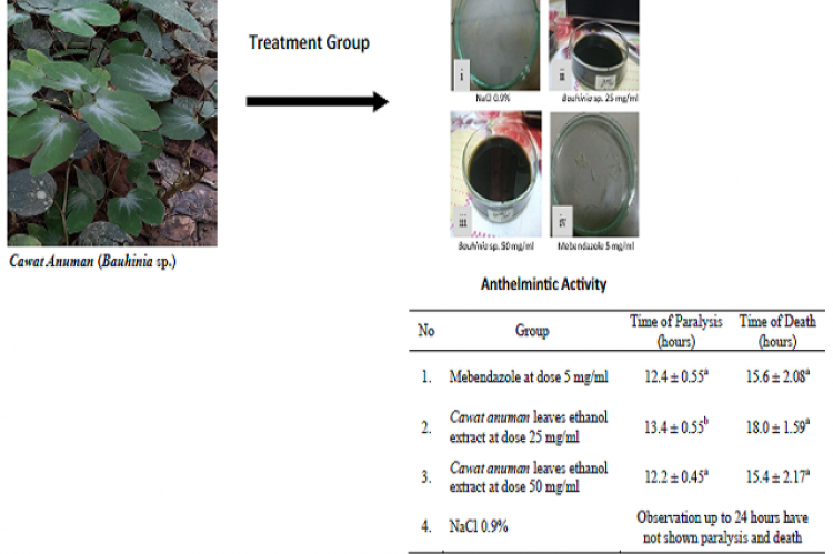 The Anthelmintic Activity of Cawat Anuman (Bauhinia Sp.) Leaves Against Ascaridia galli Worms