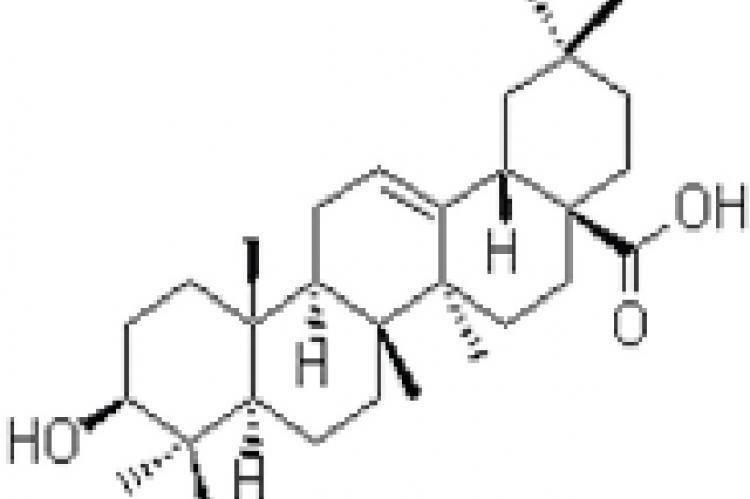 Chemical structure of oleanolic acid