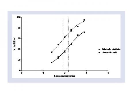 Nitric oxide scavenging assay of Morinda citrifolia fruit extract