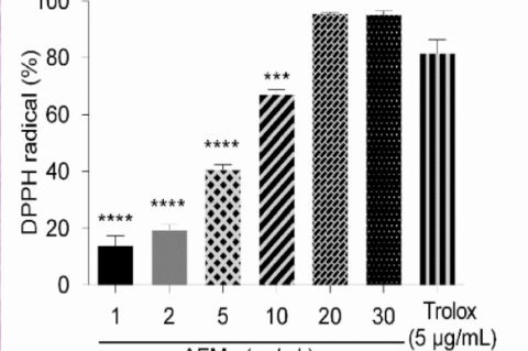 Antioxidant activity of the aqueous extract of M. guianensis (AEMg) and Trolox (5 μg/mL)