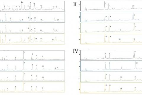 HPLC-UV chromatograms of phenolic compounds from ethyl acetate extracts of leaves and fruits of Anadenanthera colubrina