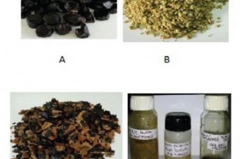 """Dried """"julang-jaling"""" (Archidendron bubalinum (Jack) I.C Nielsen) seeds"""