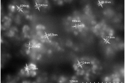 SEM image of Nigella sativa- ethanol silver nanoparticles