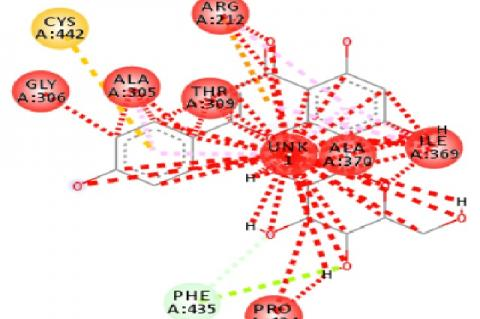 Glibenclamid and vitexin complexes