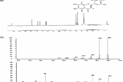 1H-Nuclear magnetic resonance (a) and Mass spectroscopy (b) of Arcapillin
