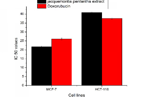 IC50 (the concentration required to kill 50% of the cell population) of Jacquemontia pentantha crude extract on cell lines of, breast carcinoma (MCF-7) and colon carcinoma (HCT-116) compared with reference drug Doxorubicin. Each result is a mean of 3 replicate samples