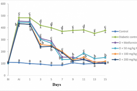 Effect of oral administration of aqueous stem bark extract of P. suberosa on blood glucose levels in diabetic rats (n = 5, mean ± SEM). BI= Before induction, AI= After induction