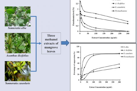 Antiplasmodial Activity of Methanolic Leaf Extract of Mangrove Plants against Plasmodium berghei