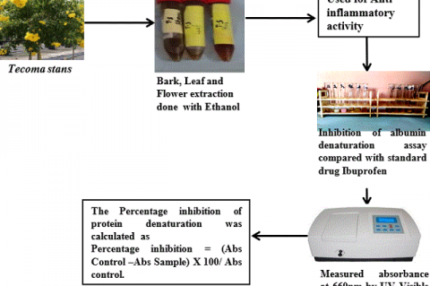 Comparative Evaluation of Anti-Inflammatory Potential of Ethanolic Extract of Leaf, Bark and Flower of Tecoma stans with Ibuprofen- An In vitro Analysis