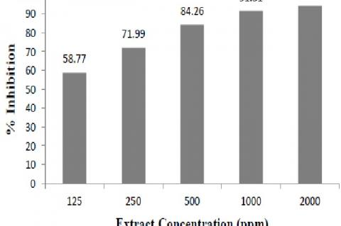 Antidiabetic activity of Halodule Uninervis extract with ethanol solvent