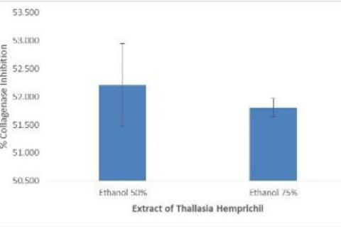 % Inhibition of Collagenase of Thalassia hempricii.