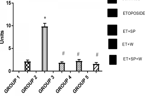 Estimation of MPO activity in Rats.