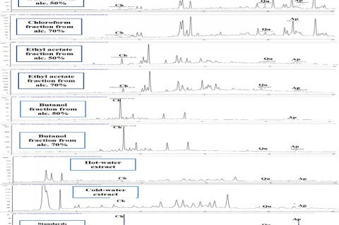 Reversed phase RP-HPLC-UV chromatograms of the fractions