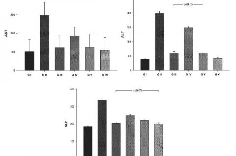 Effect of the ethanol extract of A. cherimola on biochemical parameters in hepatic damage induced by paracetamol in rats